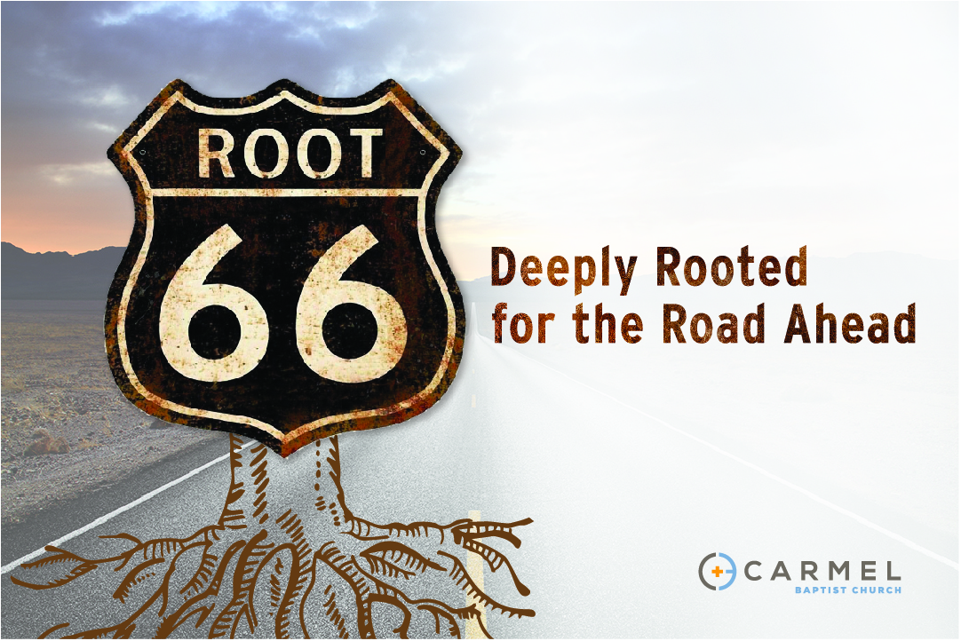 Root 66 - Mark
